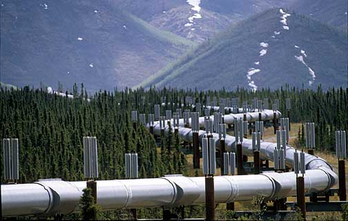 The Trans-Alaska Pipeline shown north of the Brooks Range near Atigun Pass. The zigzag design and fin devices allows for geologic movement and thermal expansion and contraction to keep the 800-mile pipieline from heaving and rupturing. Jim Lavrakas/Anchorage Daily News - 870602